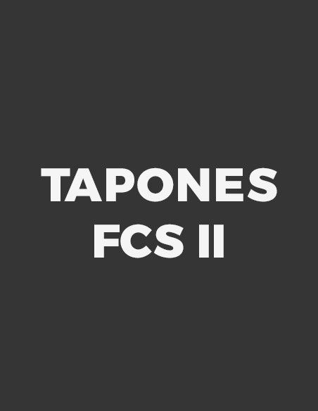FCS II